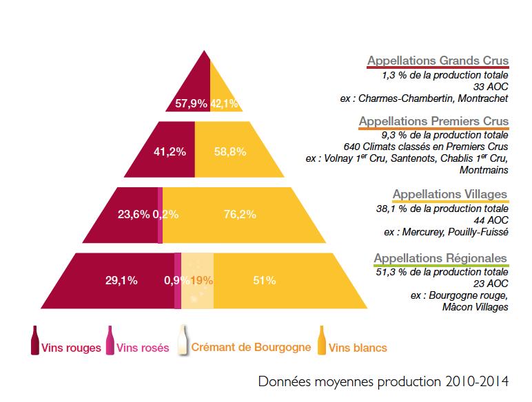 Les régions du Vin : La Bourgogne et ses appellations