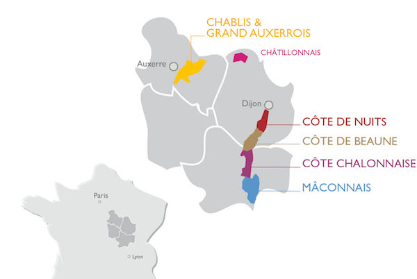 The Wine Regions : Burgundy and it's five wine-producing regions