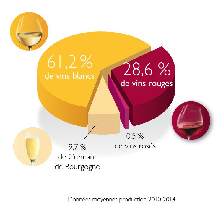 Les régions du Vin : La Bourgogne et ses vins