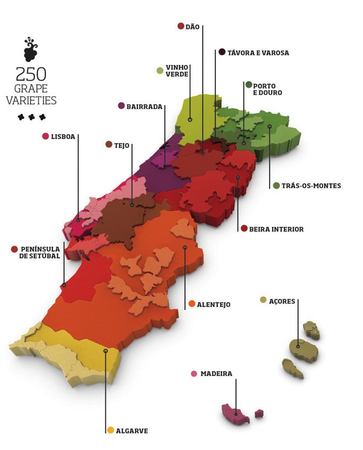 Les Régions du Vin : Le Portugal. Les différentes régions vinicoles.
