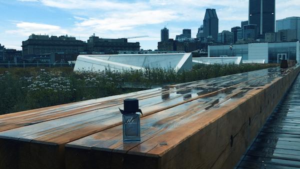 Mr. Burberry Indigo for Men - Bottle Bench