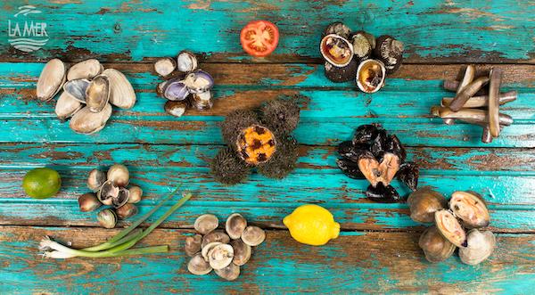 Poissonnerie La Mer - Mollusques