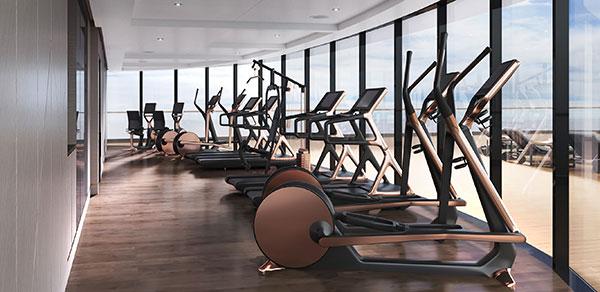The Ritz-Carlton Yacht Collection - Gym