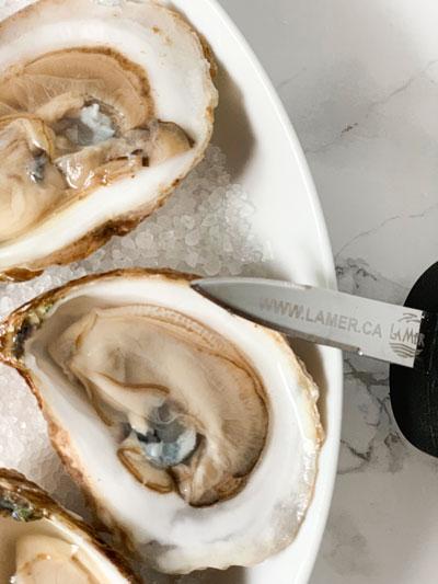 Gowanbre Couteau La Mer