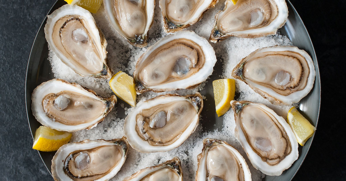 Oysters 101 - The essentials