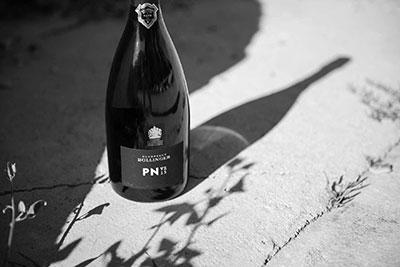 Champagne Bollinger PN-VZ15-bouteille